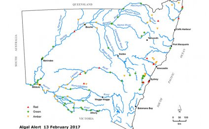 Map of algal alerts in New