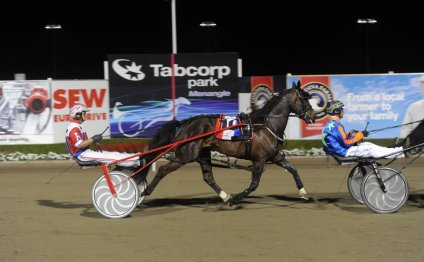Photo: New South Wales Harness