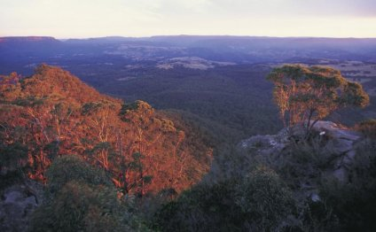 Megalong Valley, NSW