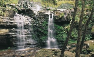 Fairy Bower Falls, Bundanoon