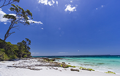 Hyams Beach, Jervis Bay. Picture; Andy Hutchinson