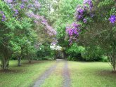 Accommodation Bellingen New South Wales